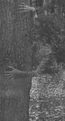 Ghost on tree