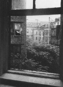 Una ventana de un barrio de Nueva York