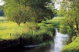 Slad, Gloucestershire-El valle